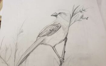 """Bird Drawing""./ Courtesy • Jasmin Ruiz"