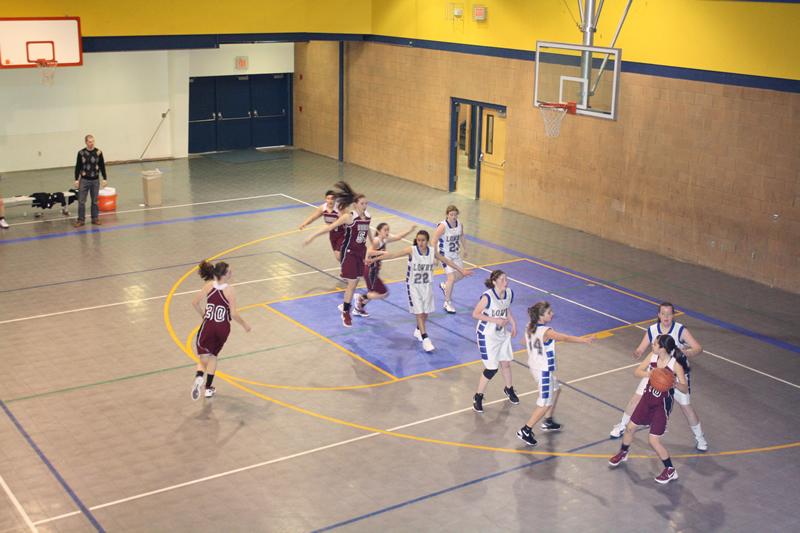 Freshman girl's basketball has successful season